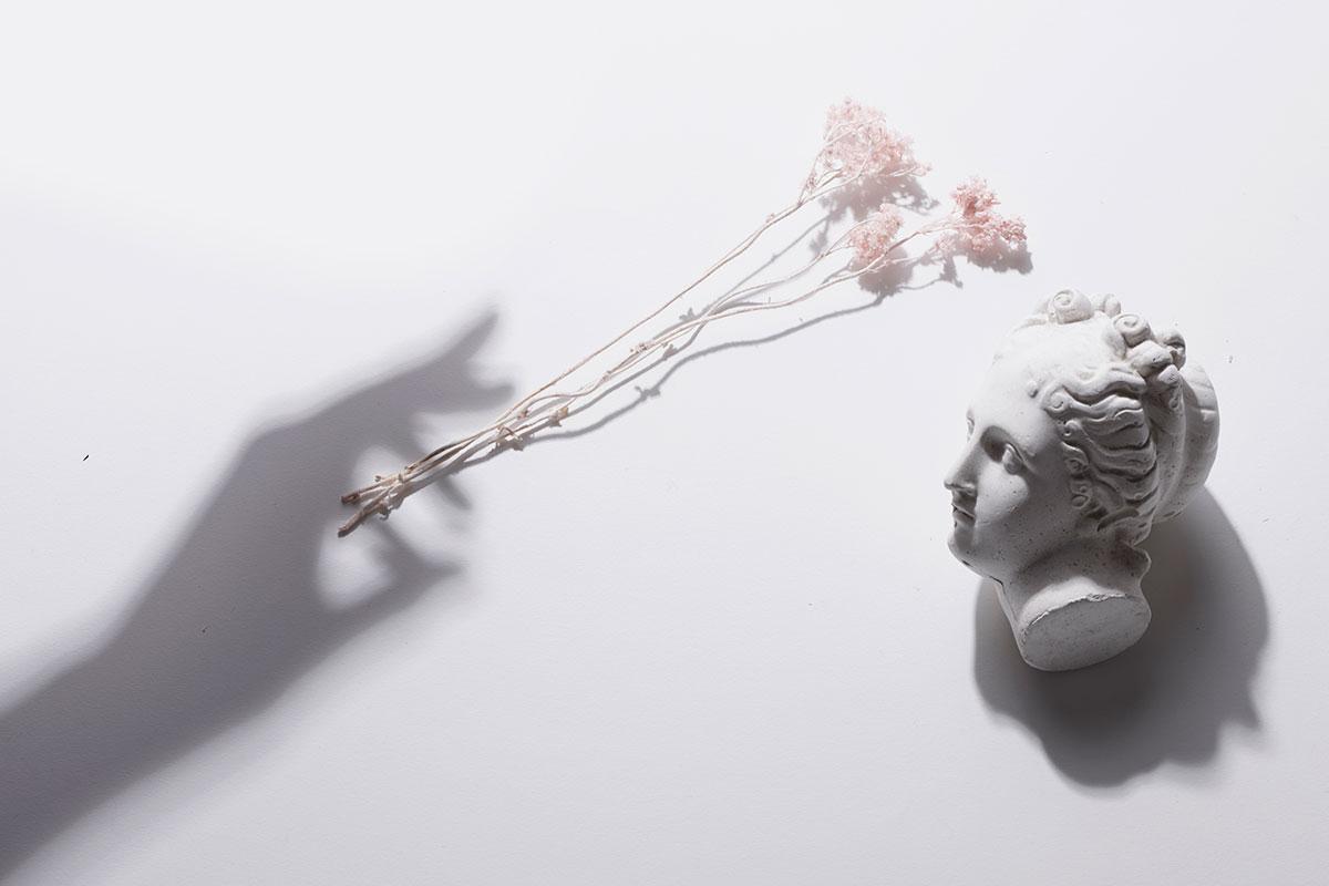 ARI_art_recherche_industrie_fleurs_preservees_1