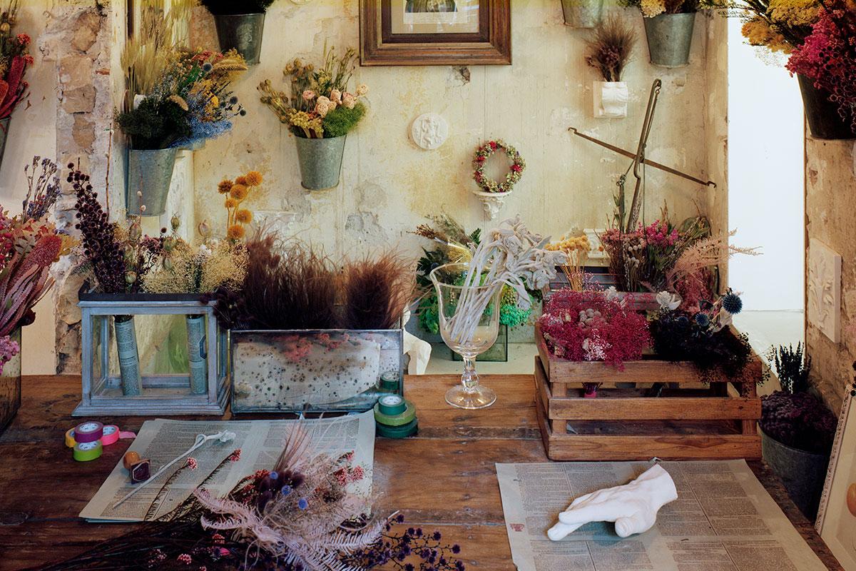ARI_art_recherche_industrie_fleurs_preservees_2