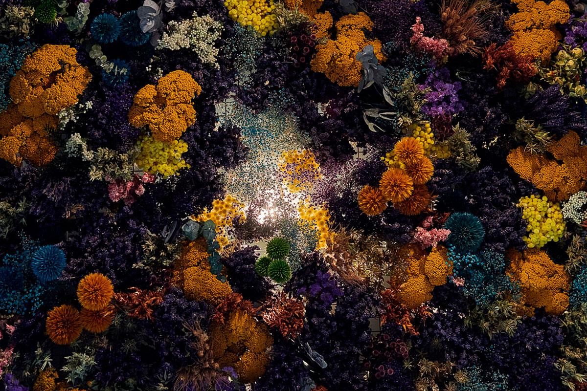 ARI_art_recherche_industrie_fleurs_preservees_3