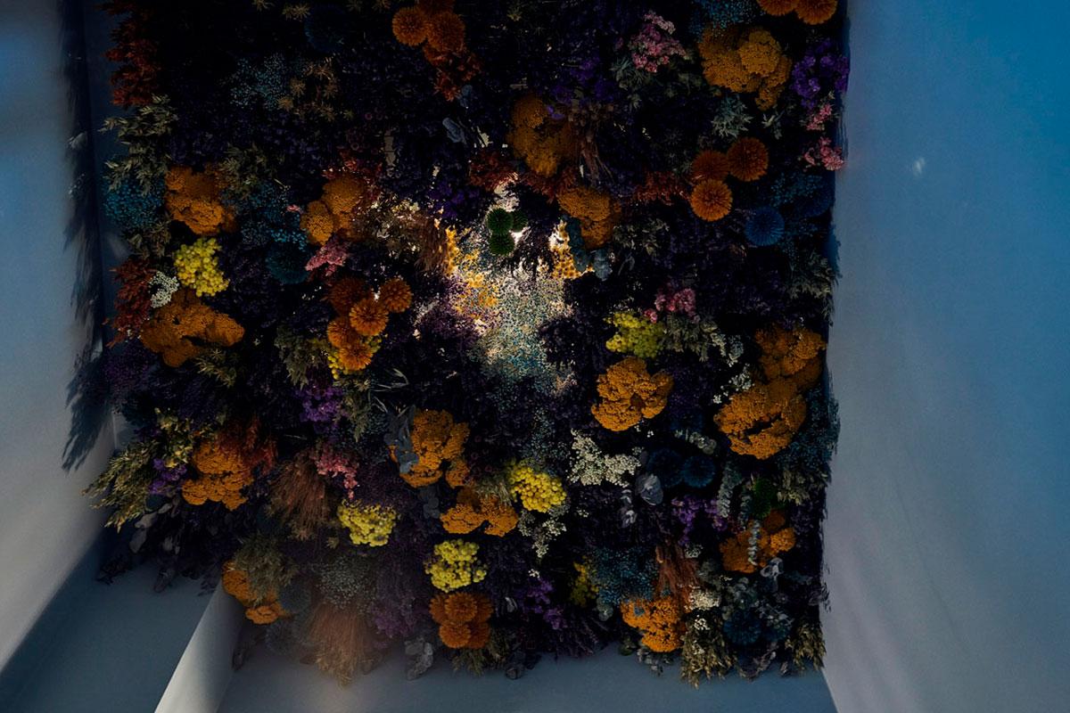 ARI_art_recherche_industrie_fleurs_preservees_7