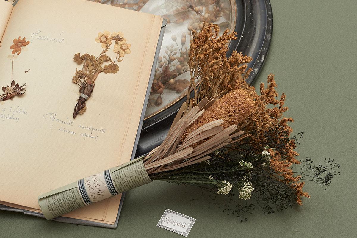 ARI_art_recherche_industrie_fleurs_preservees_9
